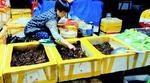 小龙虾猛降价吃货们不买账每斤便宜5元销量远不及去年