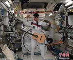 """数万线虫乘""""猎鹰9""""前往空间站:肌肉结构与人类相似"""