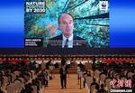 世界自然基金会总干事:人类有必要制定一个关于自然的全球目标